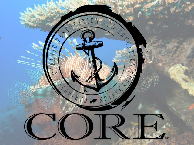 C.O.R.E. Foundation