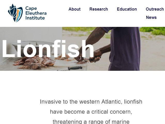 Cape Eleuthera Institute Lionfish News