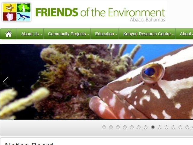 Friends Of The Environment Bahamas Lionfish News