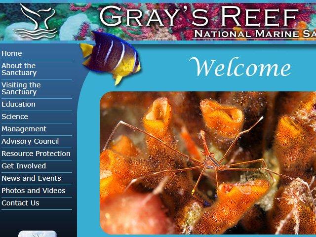 Gray's Reef National Marine Sanctuary Lionfish News