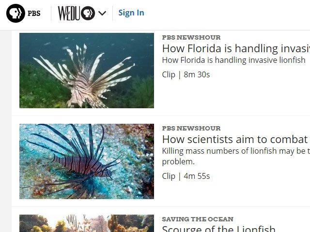 PBS Lionfish News Articles