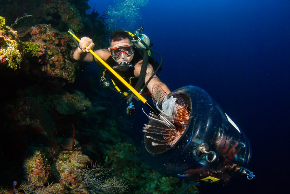 Best Place For Spearing Lionfish in Rhode Island